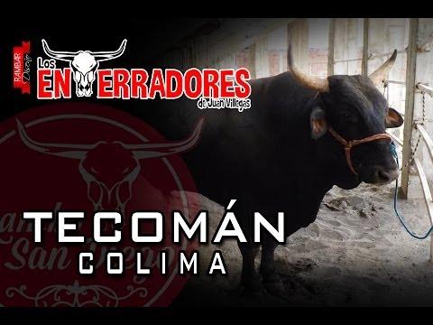 ¡¡ENTERRADORES CONTUNDENTES!! Enterradores de Juan Villegas en Tecomán Colima
