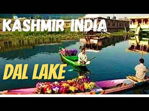 Dal Lake Srinagar Shikara Boat Ride Early Morning Kashmir India *HD* 2013