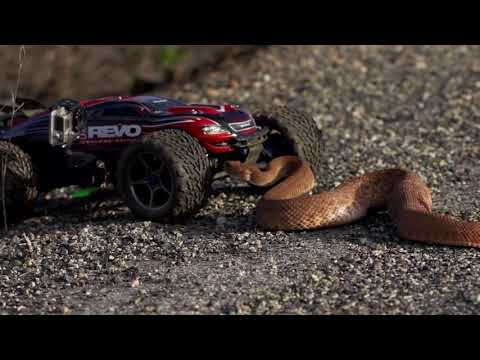 Traxxas E-Revo Rattlesnake Encounter