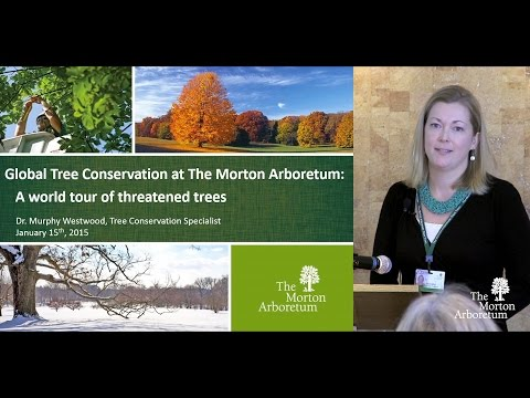 Dr. Murphy Westwood - Global Tree Conservation: A world tour of threatened trees
