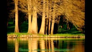 Grupul Emanuel Canada - Sa cante cantaretii Vol 3