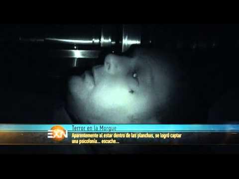 IMPRESIONANTE LLANTO DE UN NIÑO EN MORGUE | EXTRANORMAL