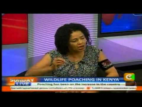 Sunday Live Interview: Wildlife Poaching in Kenya Part 2