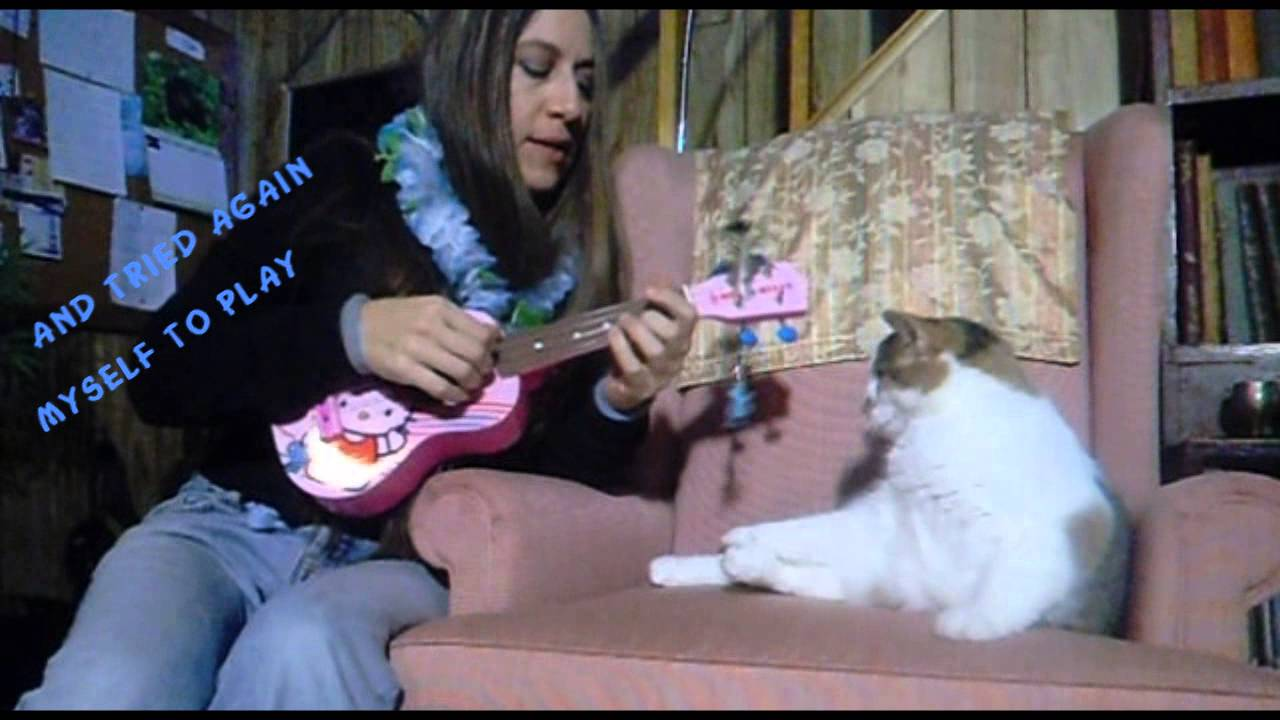 Ukulele Soft Soft Kitty Ukulele Cover