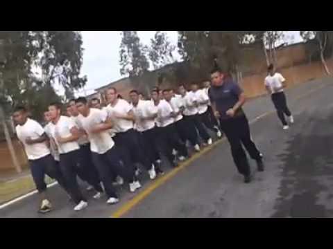 Gendarmeria adiestramiento