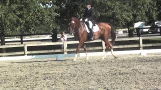 Cash Advance and Kim Schmidt,  Int I, Rosemont 2013