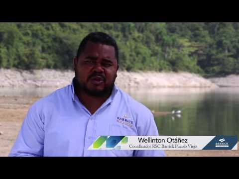 Cr a de peces for Cria de peces ornamentales