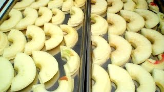 Mini taste test: PEARS and APPLES in a Harvest Right Home Freeze Dryer.