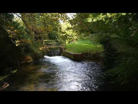 Calming River and Waterfall in the Park. Relaxing Water Sounds. (10 hours) White Noise for Sleep.