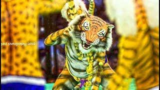 Tiger dance/Pili Nalike Winners - Polali Tigers