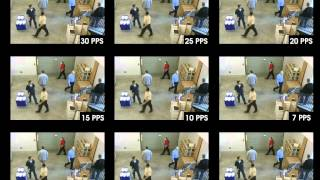 IP Video Frame Rate Demo