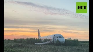 'Moscow Miracle?' Plane hits flock of birds, performs safe emergency landing