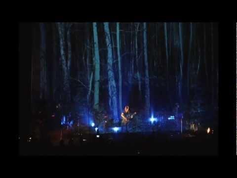Steven Wilson - Sectarian