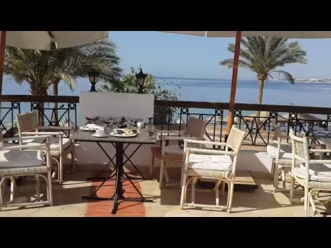 Египет Шарм Эль Шейх trip in Egypt Melton Beach 5 (ex. Melia Sinai hotel)