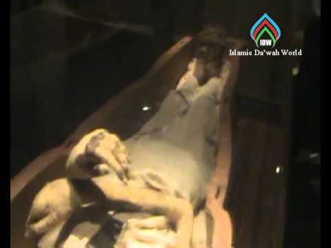 Firon Mummy  in Egypt Museum