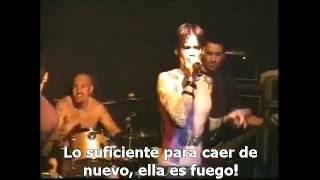 Watch Buckcherry Dead Again video