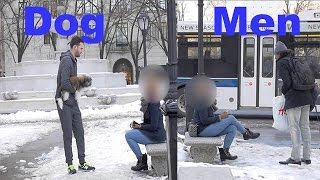 [The Homeless Dog vs Man (Social Experiment)] Video