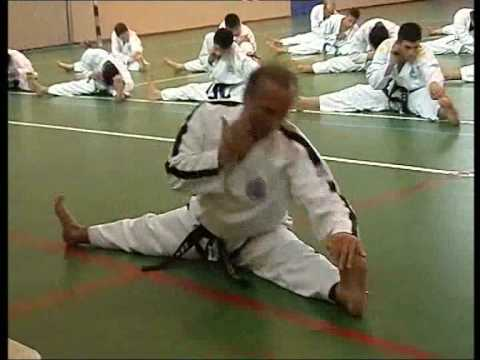 Taekwon-do ITF Fundamental Kicking and Punching Techniques part 1 Image 1