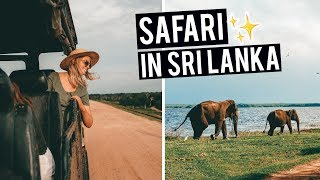 Safari Experience in Sri Lanka | Yala National Park