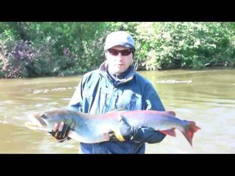 рыбалка в хабаровске ютуб