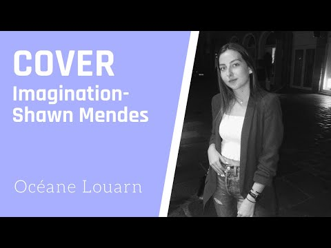 Imagination (Shawn Mendes) - Cover Océane