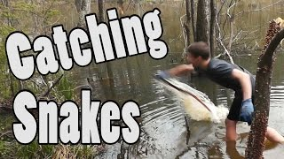 Hunting Snakes with Blowguns vs by Hand!