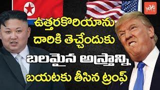 ఉత్తరకొరియాను దారికి తెచ్చేందుకు ట్రంప్ వ్యూహం  Donald Trump Sends Final Warning to North Korea YOYO