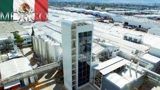 Nestlé México Construirá su Planta Más Grande del Mundo en Veracruz