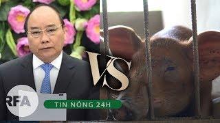 Tin nóng 24H | Thủ tướng Việt Nam muốn cả nước tuyên chiến với dịch tả lợn Châu Phi