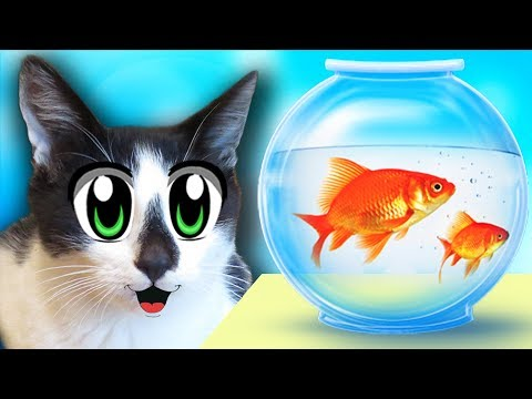ЧЕЛЛЕНДЖ НАЙДИ КОЛБАСКУ! СМЕШНЫЕ коты МАЛЫШ и Кошка МУРКА! НОВЫЕ ПРИКОЛЫ КОТОВ! Challenge Funny CATS