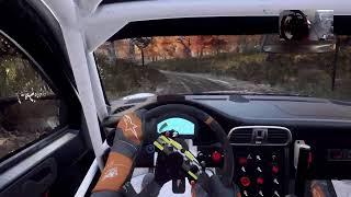 dirt rally 2.0 porsche mud  USA  day event ( wheel cam )