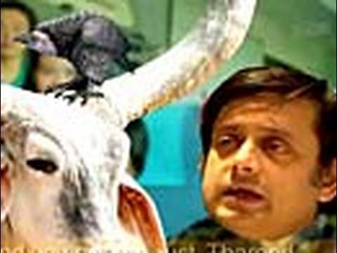 Comedy Show Jay Hind! Shashi Tharoor Cattle Class Video video