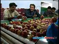 Akalangalile India - Apple farmers in  Himalayala:  Akalangalile India10th Oct 2013 Part 2അകലങ്ങളിലെ ഇന്ത്യ