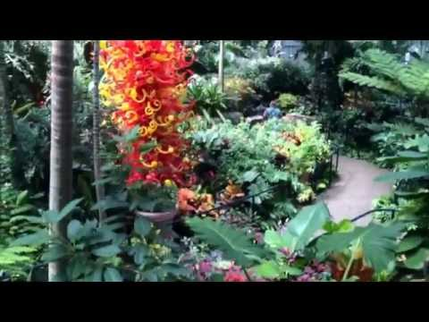 FRANKLIN PARK CONSERVATORY AND BOTANICAL GARDENS, BUTTERFLY EXHIBIT