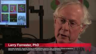 VA Maryland Health Care System, U of Maryland School of Medicine - Robotics and Rehabilitation