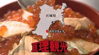 亘理観光 CM / Watari Town Commercial
