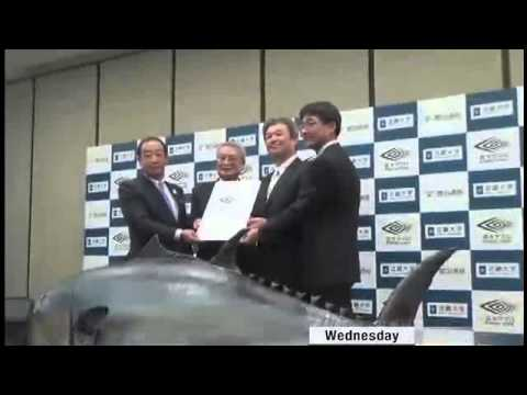Hope for Tuna Stocks   On Business   News   NHK WORLD   English