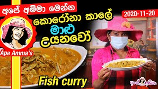 Haalmasso (maalu) Fish curry by Apé Amma