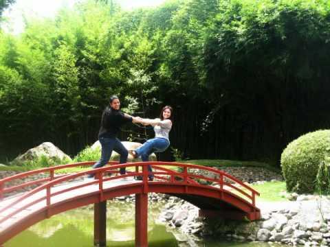 Jard n bot nico lankaster youtube for Jardin lankester