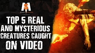 Top 5 REAL & MYSTERIOUS CREATURES Caught On VIDEO