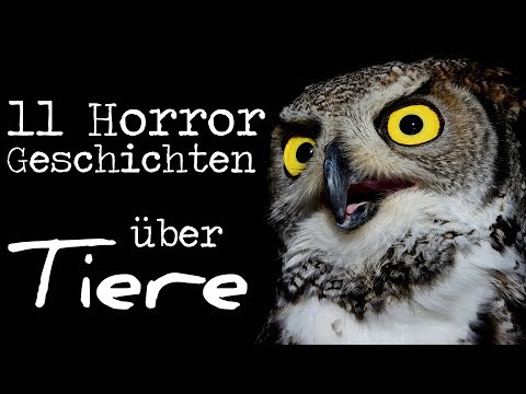 11 Horrorgeschichten über Tiere | Creepypasta Compilation German / Deutsch | Horror Hörbuch