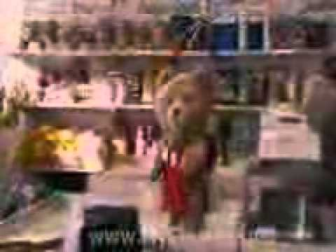 Adult Comedy Ted Film Hollywood Film Hindi Dubed. video