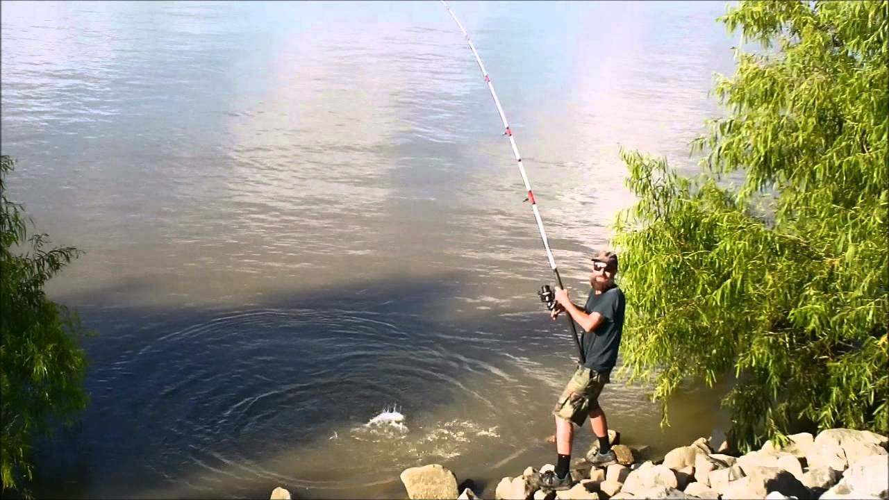 Mississippi river catfish fishing in the morning youtube for Mississippi out of state fishing license