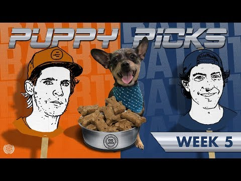 BATB 11 | Puppy Picks: Week 5
