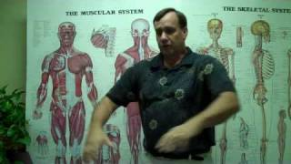 Sports Massage pain relief upper back + shoulders ASHA Schoo