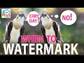 When to Watermark: Picture This! Podcast MP3