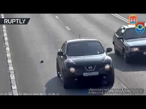 Russian CCTV: Man saves kitten stranded in the middle of busy highway