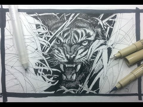 Pen & Ink Drawing Tutorials | Draw a tiger glaring through the forest
