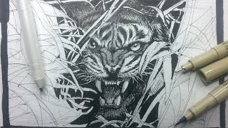 Pen & Ink Drawing Tutorials | How to draw a tiger