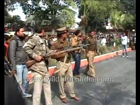 Leopard attacks town: Meerut shuts down in fear!